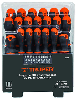 20-pc Screwdriver and 10-bit Set w/ Organizer
