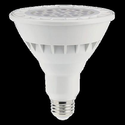 Bulbs- PAR38