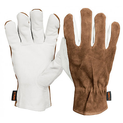 Goatskin Gloves w/ Leather Back, Elastic Wrist