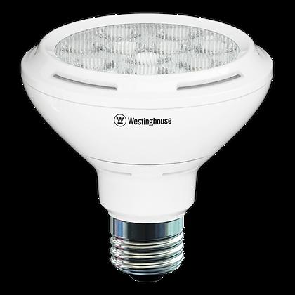 Bulbs -PAR30