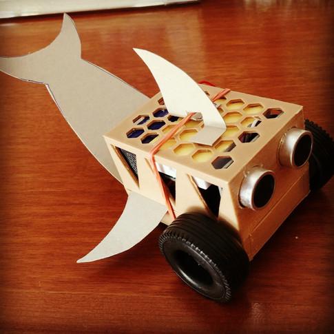 Minibot marin