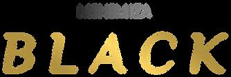 Logo MINIMIZA Black.png