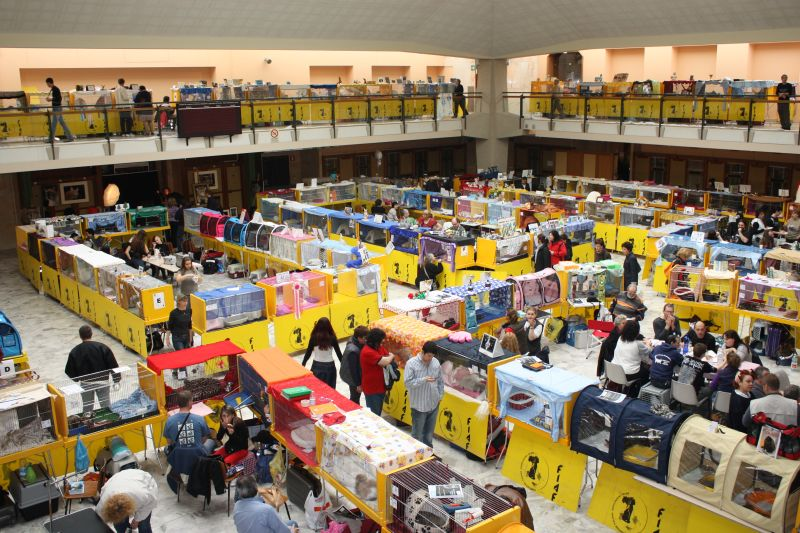 Expo Novara