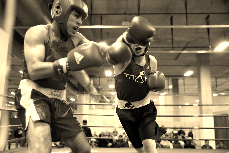 boxe quebec