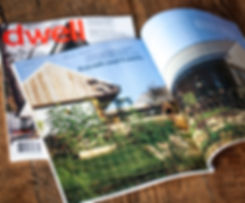 dwell magazine shot on wood.1.jpg