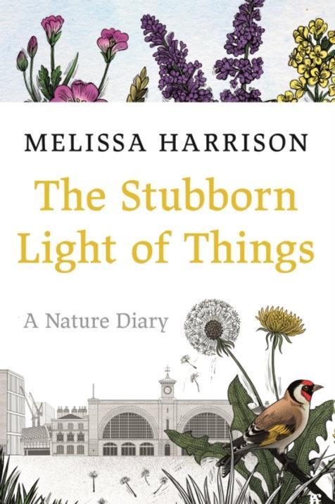 The Stubborn Light of Things - Melissa Harrison