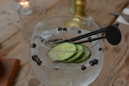 Gin at The Egremont