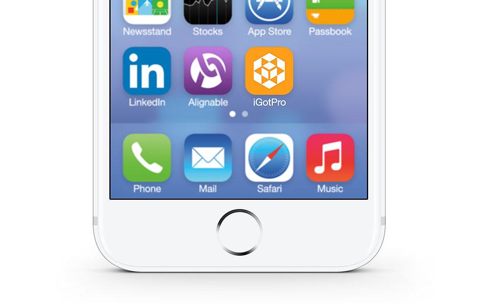 iGotPro icon design | Adam Morris, Brand Consultant