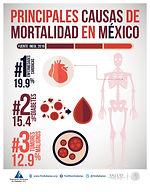 principales_causas_de_mortalidad_en_Méx