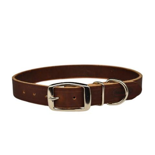 Warner Cumberland Leather Dog Collar