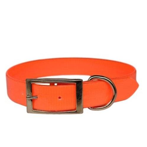 Warner Solid Dayglo Dog Collar