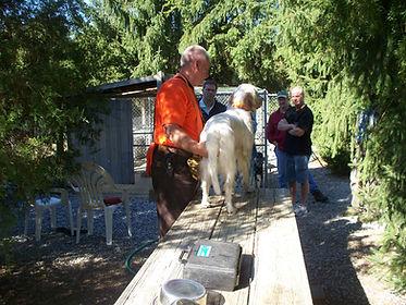dog day 2009 035.jpg