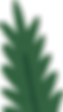 foliage-3.png