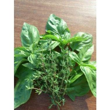Herbs Basil & Thyme