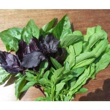 Herb Mix Sorrel & Mint