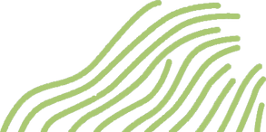 fronds.png