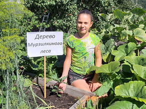 Валерия Зражевская