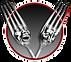 Crimson Tine_Logo Design_WEBSITE_SML ICO