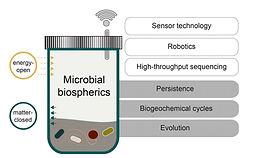 Microbial biosphere.jpg