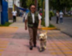 PerrosGuia_Ciegos-41_edited.jpg