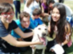 Jóvenes acariciando a un perro guía en entrenamiento