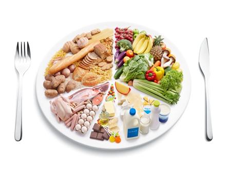 Roda_dos_alimentos