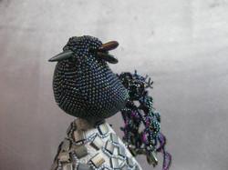 The Magooty Bird