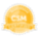 SAI_BadgeSizes_DigitalBadging_CSM (1).pn