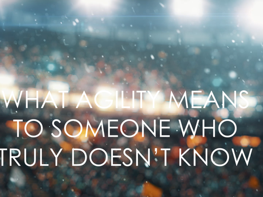 What Does Agility Truly Mean?