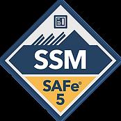SSM Logo.png