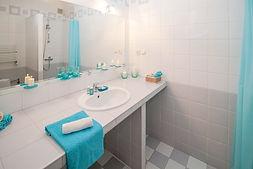 bathroom-2094716_960_720_edited.jpg