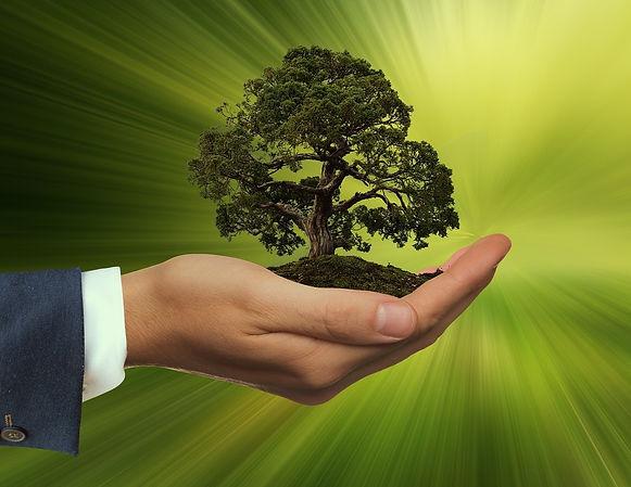 sustainability-3303398_1920_edited.jpg