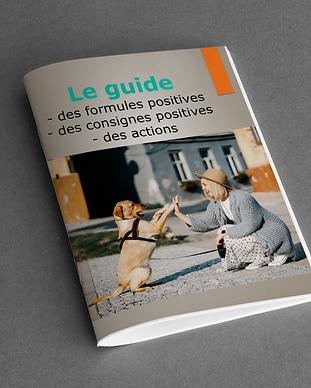 Guide livret formules positives.png