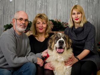 Éduquer un chien de famille, éduquer votre compagnon