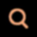 Chromo_Focus_Orange.png