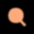 Chromo_Focus_Orange_Full.png