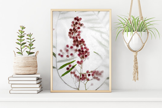Sweet Magnolia Photography