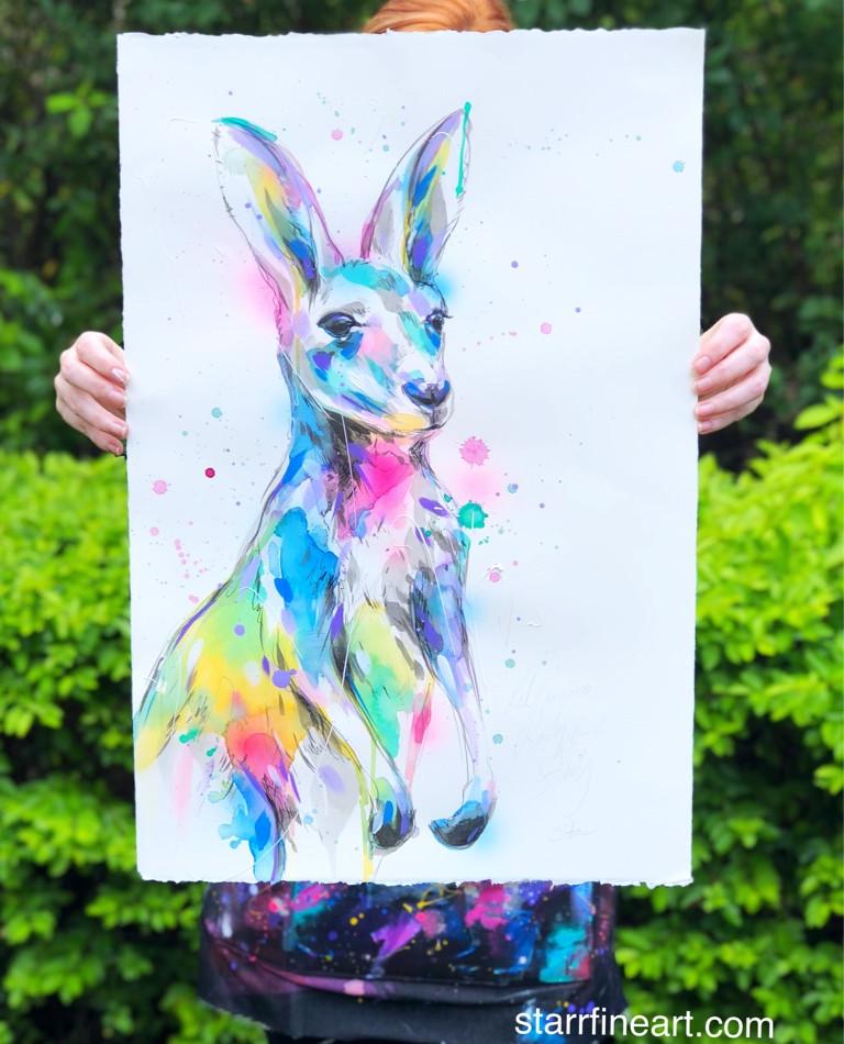 Red Kangaroo (study)