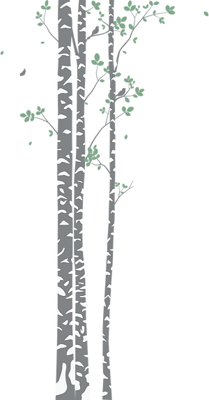Birch Trees_left.png