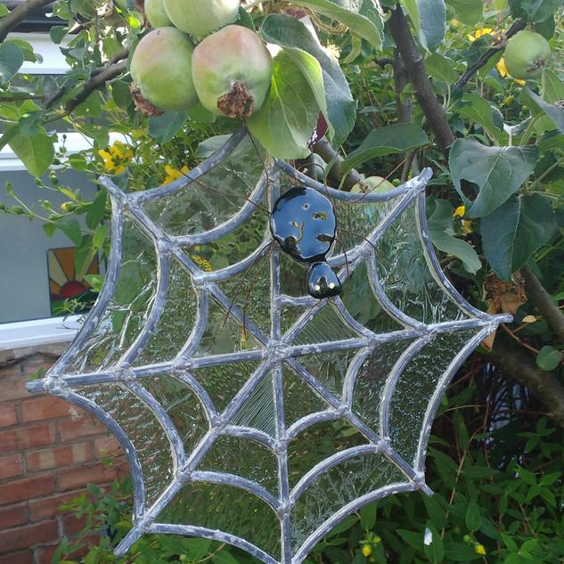 Spiders Web.jpg
