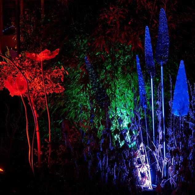 Cust - Flower Selection Light Up 2.jpg