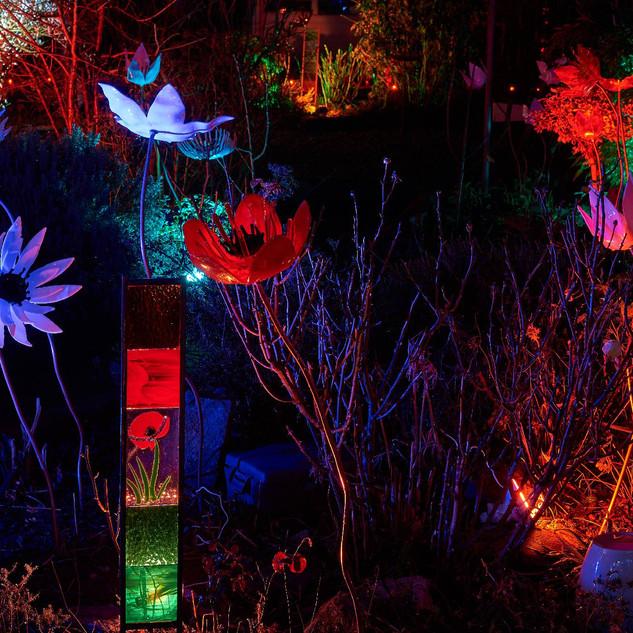 Cust - Flower Selection Light Up 1.jpg