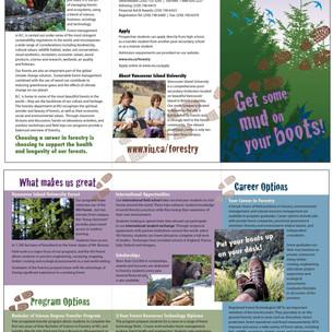 VIU Forestry Brochure
