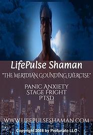 LPShaman_meridian grounding dvd label_co