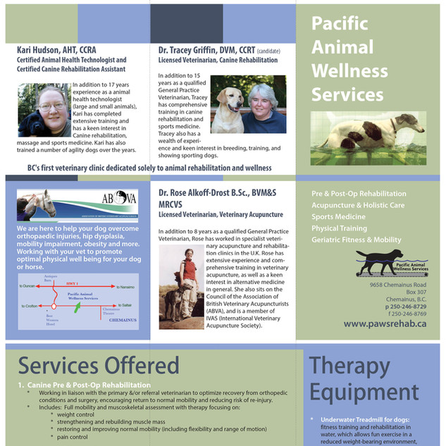 PAWS Brochure