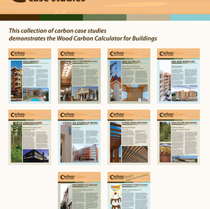 Carbon Carbon Case Studies Summary Sheet