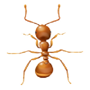 thief-ant-white.png