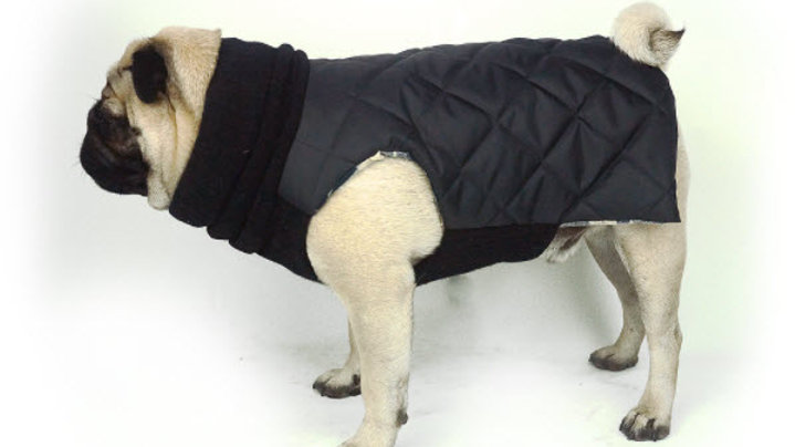 Sophisticated Quilted Snood Jacket