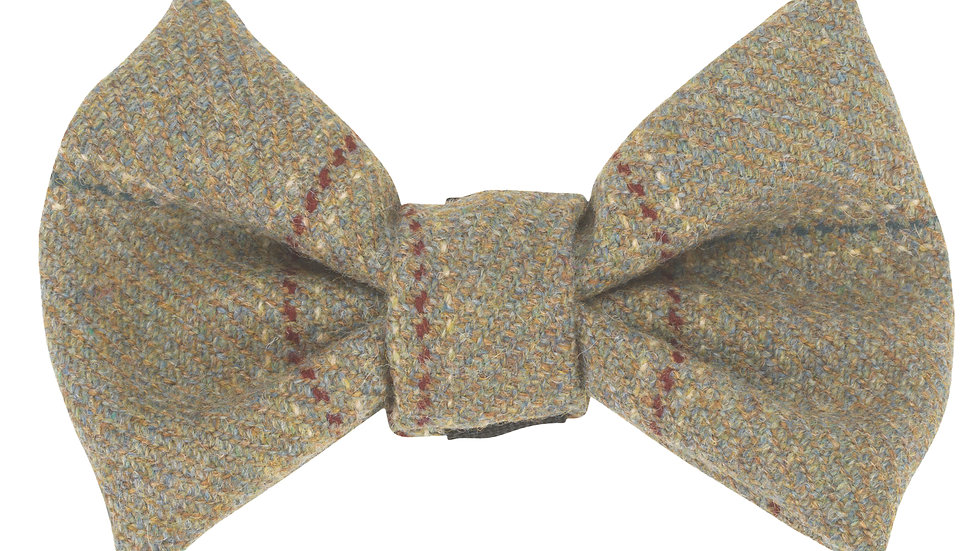 Digby Bow Tie