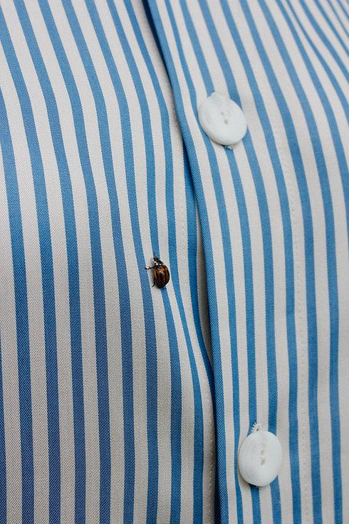tomadam-batch-blue-pyjama-15.jpg